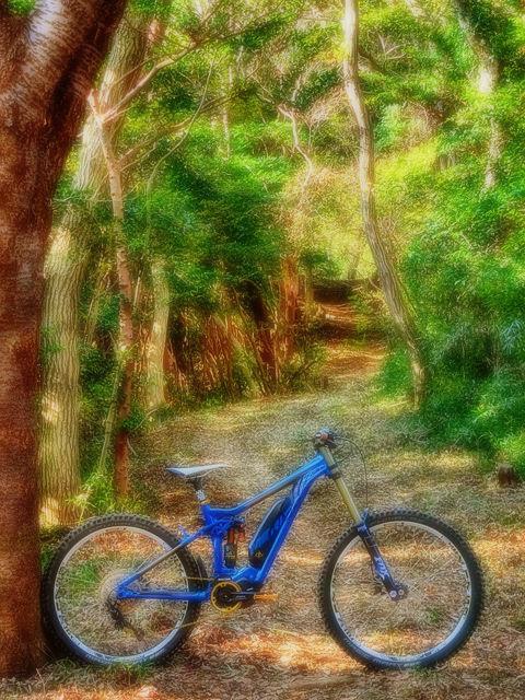 MERIDA eONE-SIXTY adventure XXIX_b0049658_18423656.jpg
