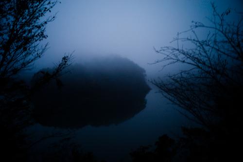 191125 fog_b0129659_9432996.jpg