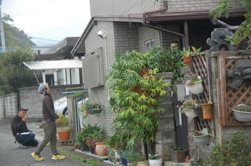 15カ月目で 我が家の台風被害復旧工事が始まりそう_c0108460_13494457.jpg