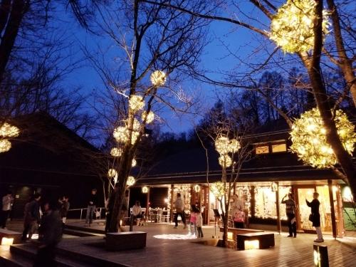 ハルニレテラス「幸せが灯る街」* やどりぎのイルミネーション♪_f0236260_00082433.jpg
