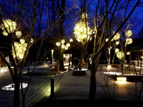 ハルニレテラス「幸せが灯る街」* やどりぎのイルミネーション♪_f0236260_00083957.jpg
