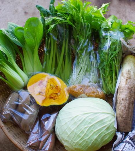 今週の野菜セット(11/26~11/30着)_c0110869_12534773.jpg