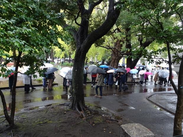 久し振り、、雨の上野_d0193569_07453519.jpg