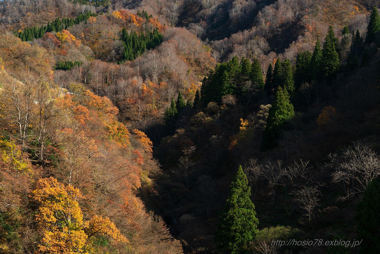 晩秋の光と影_e0214470_23035796.jpg
