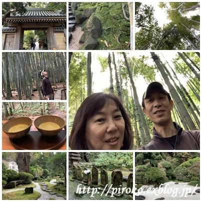 鎌倉巡り_b0010775_11502788.jpg
