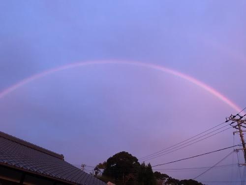 モンちゃんミラクルと虹のかけはし_f0054677_07145562.jpeg