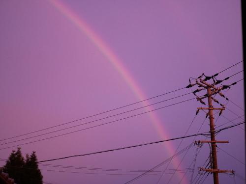 モンちゃんミラクルと虹のかけはし_f0054677_07332493.jpeg