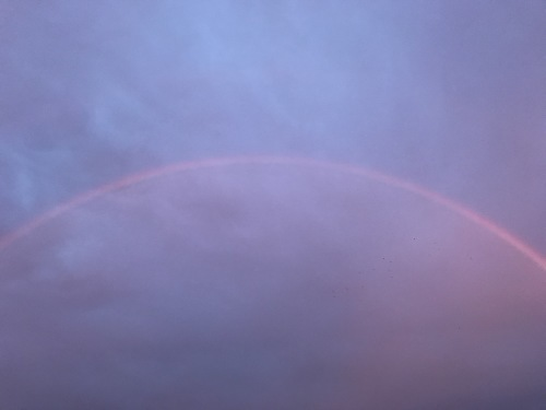 モンちゃんミラクルと虹のかけはし_f0054677_07343331.jpeg