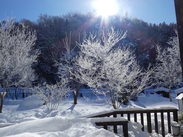 過去の雪景色でも_e0365880_22152856.jpg