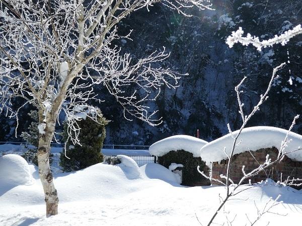 過去の雪景色でも_e0365880_22155331.jpg