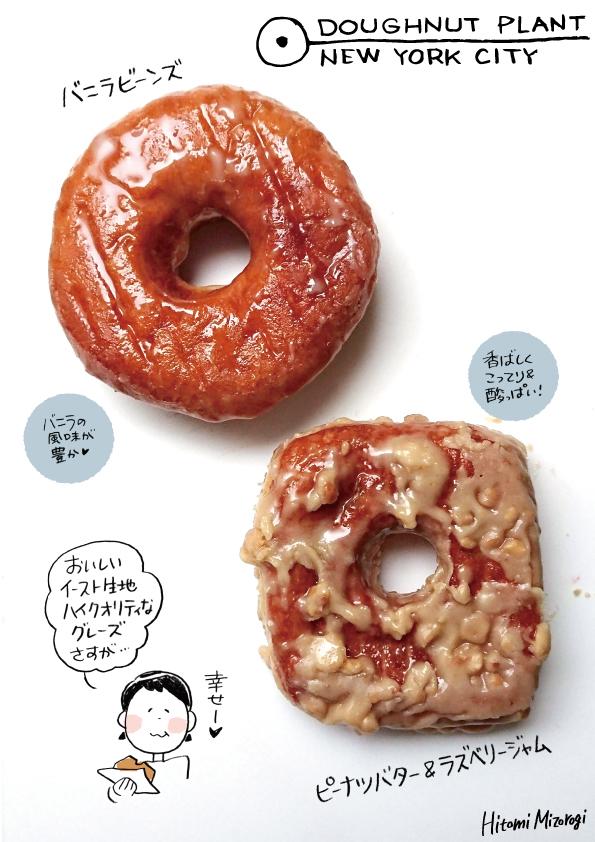 【NY発ドーナツ】ドーナッツプラントパン生地ドーナツ2種【貫禄あるおいしさ】_d0272182_22395333.jpg