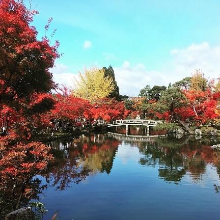 Kyoto_b0204691_15461461.jpg
