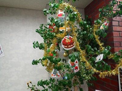 クリスマス飾り始めよう_f0203094_11590364.jpg