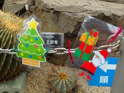 クリスマス飾り始めよう_f0203094_13262473.jpg