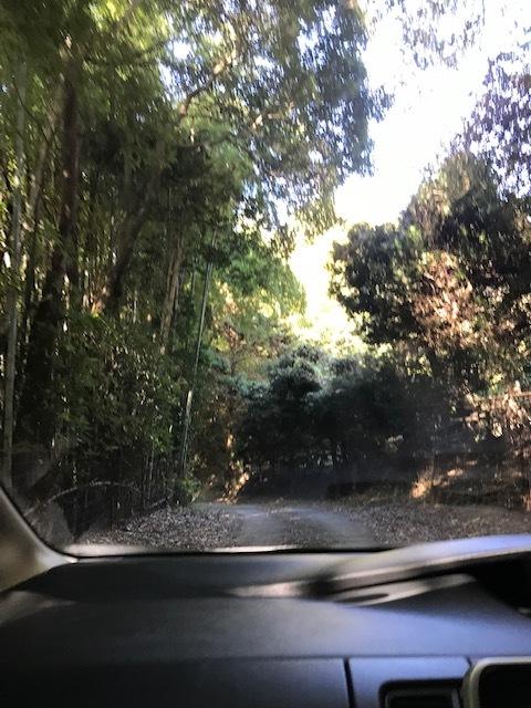 淡路島 岩上神社_f0204295_11391135.jpg