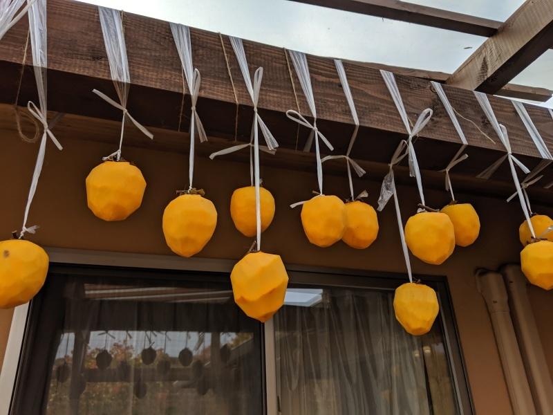 干し柿作り_f0376200_18564581.jpg