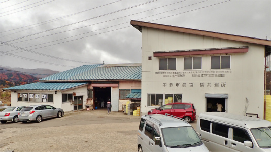 今年もリンゴの仕入れに長野県中野市へ_c0336902_20124348.jpg
