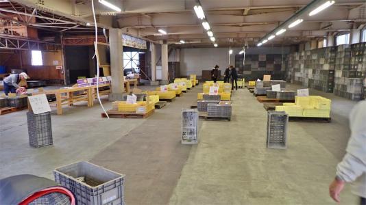 今年もリンゴの仕入れに長野県中野市へ_c0336902_20125128.jpg