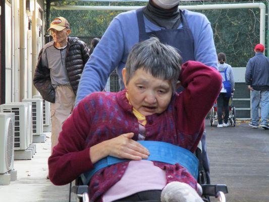 11/25 散歩_a0154110_09413469.jpg