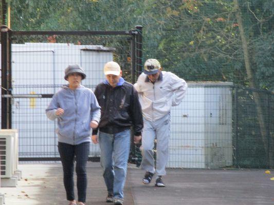 11/25 散歩_a0154110_09413771.jpg