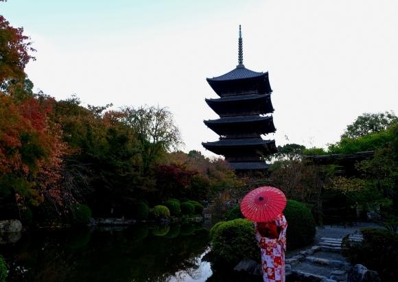 京都の旅 \'19 秋_e0000910_09351299.jpg
