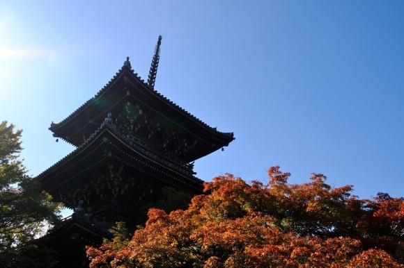 京都の旅 \'19 秋_e0000910_10015840.jpg