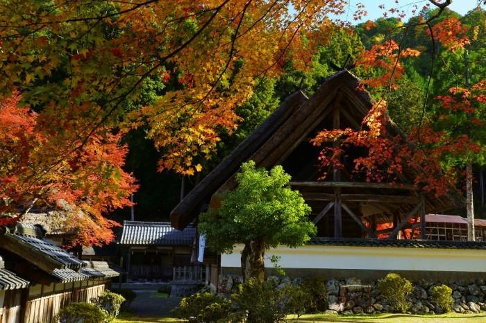摩氣神社_e0177413_21183520.jpg