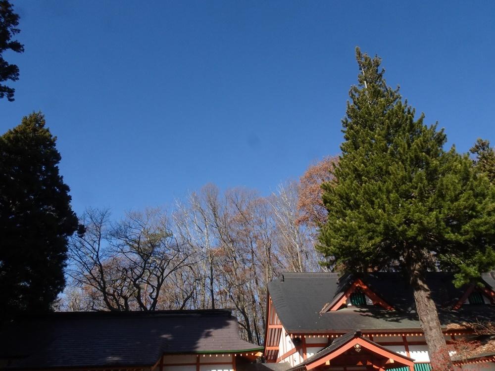 神葬祭奉仕_c0111229_19473165.jpg