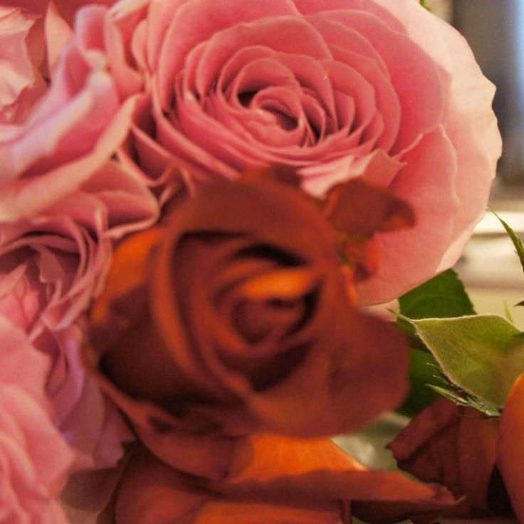 至福の薔薇 水晶と薔薇〜女神の時間_a0018237_23530505.jpg