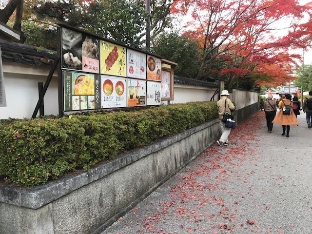 京都は11月最終週も紅葉見頃です_d0020139_15550548.jpeg