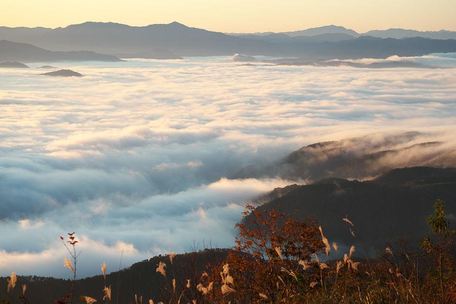 来日岳の雲海'19 #2_c0067040_22114594.jpg