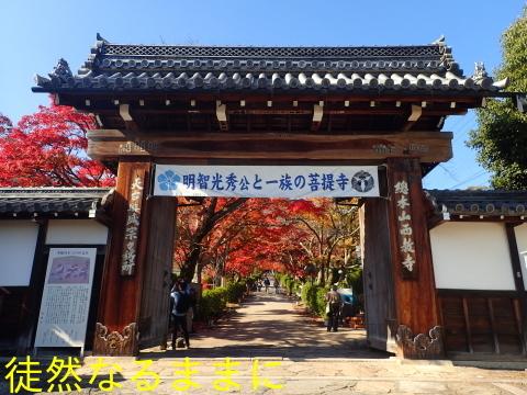 西教寺・坂本城跡_d0285540_06581971.jpg
