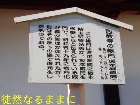 西教寺・坂本城跡_d0285540_07082395.jpg