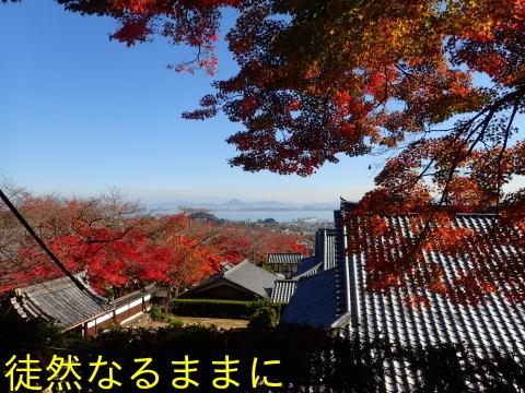 西教寺・坂本城跡_d0285540_07084105.jpg