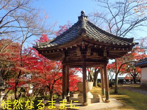 西教寺・坂本城跡_d0285540_07090493.jpg