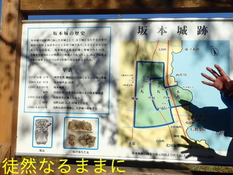 西教寺・坂本城跡_d0285540_07102932.jpg