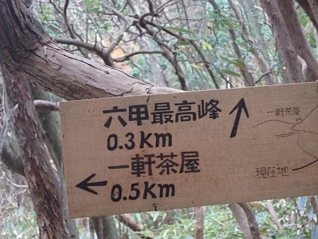 裏六甲 四十八滝 おじさん二人の冒険_f0334143_8251936.jpg