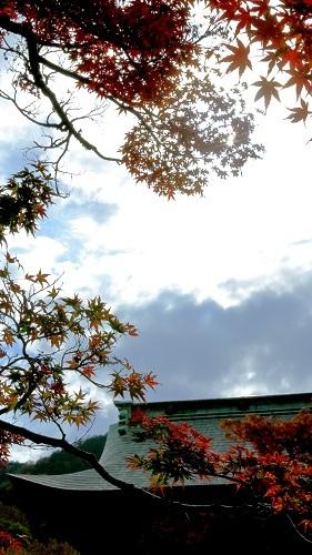 秋を楽しむ昼下がりの_e0241944_23035941.jpg