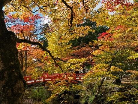 高野山~奥の院_c0057946_20211249.jpg