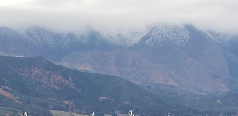 裏山は初雪そろそろス..._b0222066_13165648.jpg