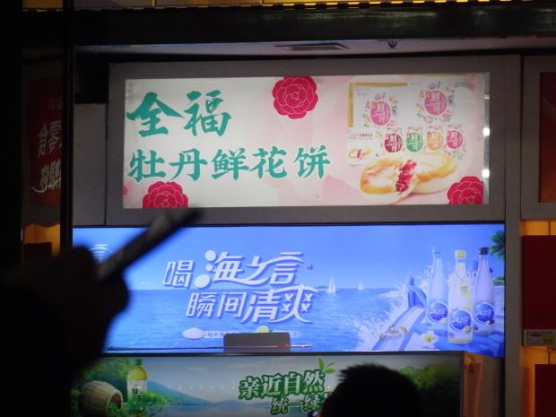 中国の新幹線??_d0193569_07425898.jpg