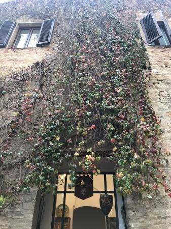 必見!『San Gimignano 1300(序章)』(街道編)_a0136671_00051813.jpeg