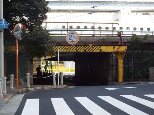江戸東京博「サムライ」展まで見たこと_f0211178_17060629.jpg