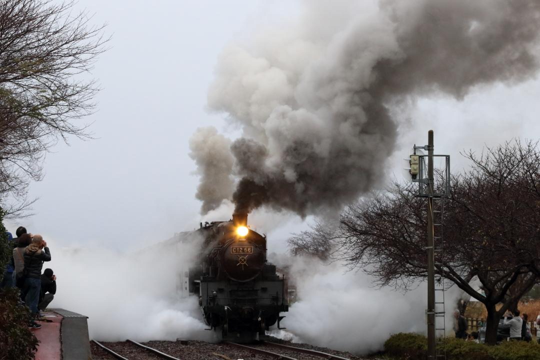 復路発車は白黒の煙が2本 - 2019年晩秋・真岡鉄道 -_b0190710_22272704.jpg