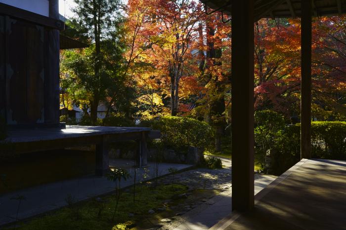 西明寺_e0177413_18260785.jpg