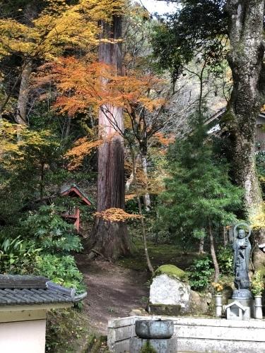 須磨区佛教会研修旅行_d0184114_20034066.jpeg