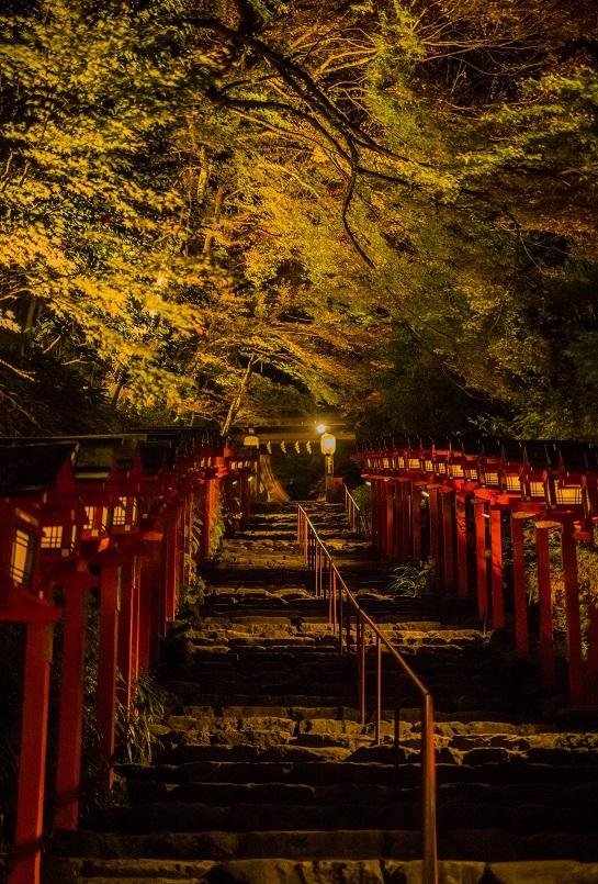 2019京都紅葉~貴船神社ライトアップ_e0363038_11144240.jpg