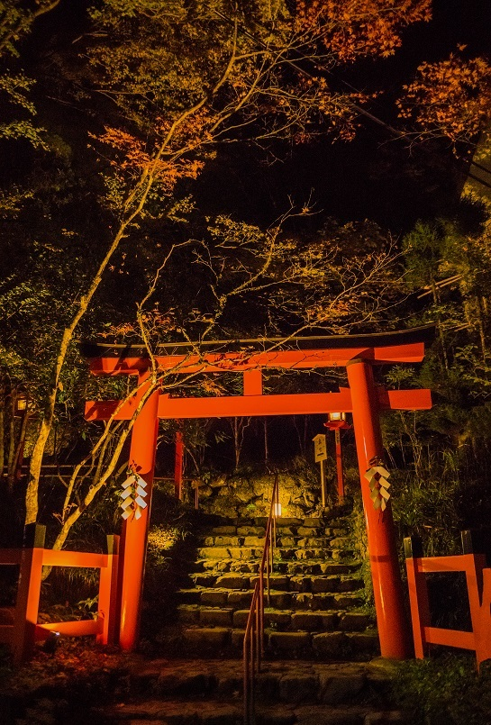 2019京都紅葉~貴船神社ライトアップ_e0363038_11145618.jpg
