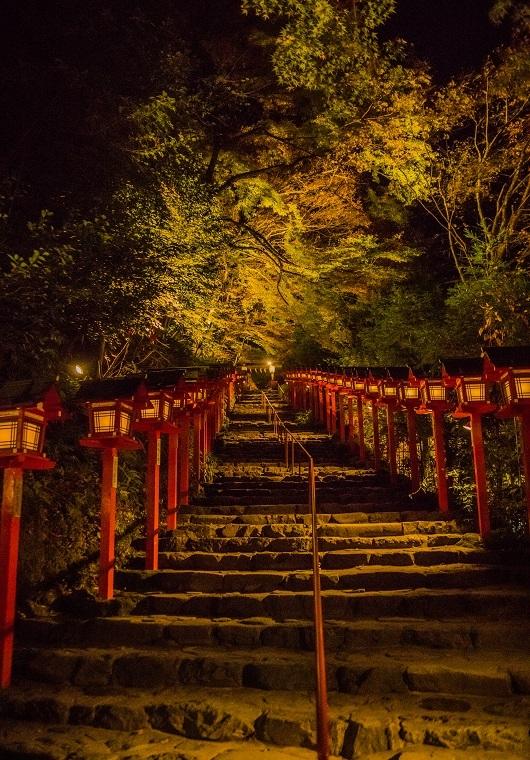 2019京都紅葉~貴船神社ライトアップ_e0363038_11150025.jpg