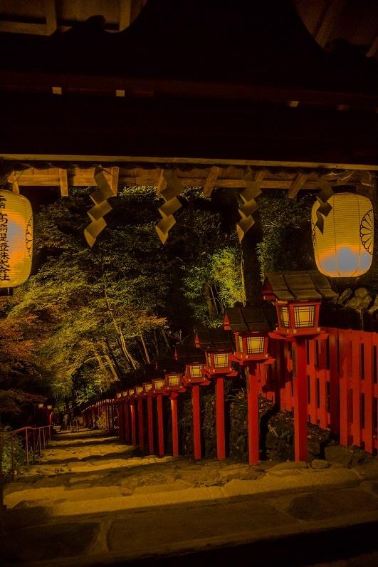 2019京都紅葉~貴船神社ライトアップ_e0363038_11150478.jpg